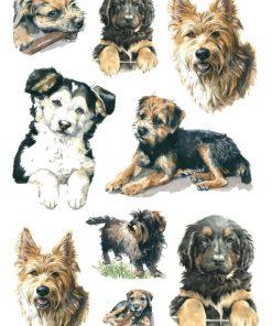 HERMA 3341 DECOR DOGS