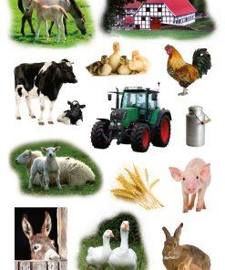 HERMA 3358 DECOR FARM ANIMALS