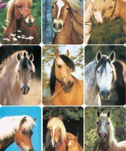 HERMA 3568 DECOR HORSE HEADS