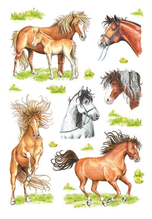 HERMA 3307 DECOR MARKED HORSES