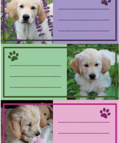 HERMA 5529 VARIO DOGS