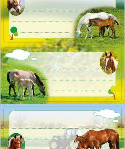 HERMA 5568 VARIO HORSES GLITTE