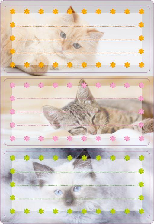 HERMA 5569 VARIO CATS GLITTERY