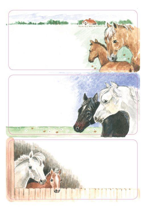 HERMA 5893 VARIO SCHOOL HORSES